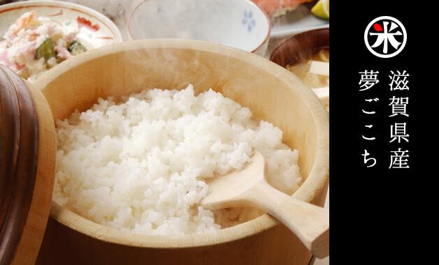 コシヒカリから生まれた奇跡の低アミロース米「夢ごこち」。幻のお米とも呼ばれ、夢心地になるほど美味しいというもっちり米。