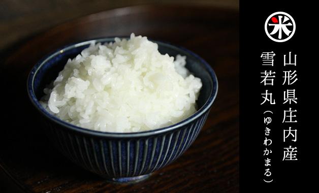 雪若丸というお米を知っていますか?山形県でつや姫の弟分として生まれた「大粒新食感」のお米なんです。