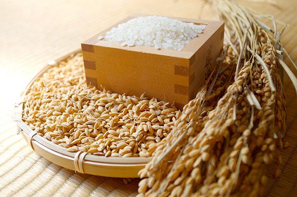 お米の通販で玄米食や分づき米をお探しの方に人気なのは、発送直前に精米する即時精米だから、お米の鮮度が違います。