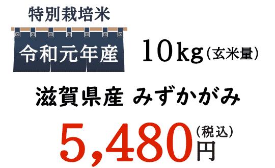 今回ご紹介するのは、古くは江州米、近江米と呼ばれている滋賀県産のお米「みずかがみ」です。