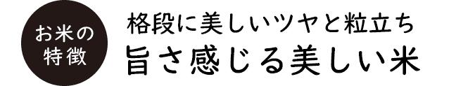 有機無農薬コシヒカリの通販をお探しの方に京都の米屋、大米米穀店ではオススメのお米をご提案しております