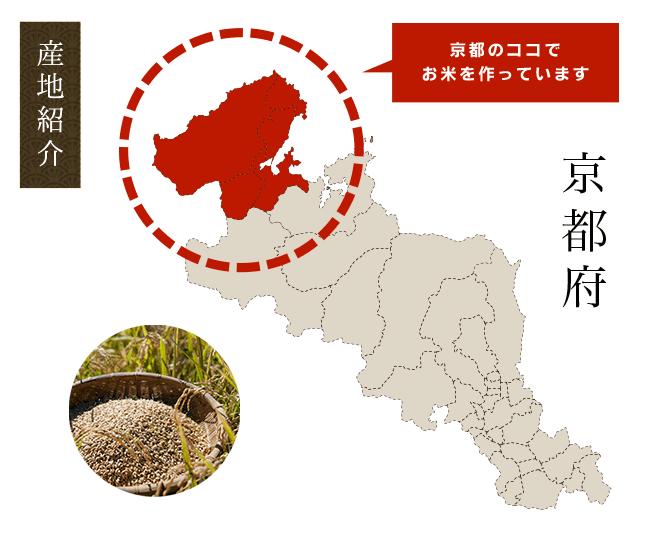 京都の最北部に位置する京丹後市で作られたお米です。丹後は、関西でも特に冬場の寒暖の差が激しい地域で米作りに適した土地だと言われています。