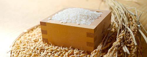 お米の通販は京都西陣の大米米穀店