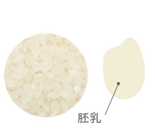 精米したてのお米を送料無料で発送しております