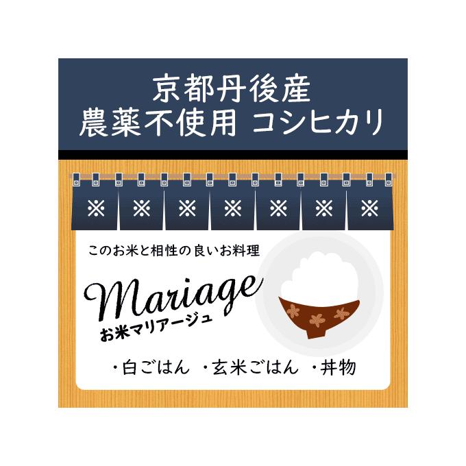 お米通販でも人気の京都府産のコシヒカリの特徴は、地産地消・農家直送の京都米