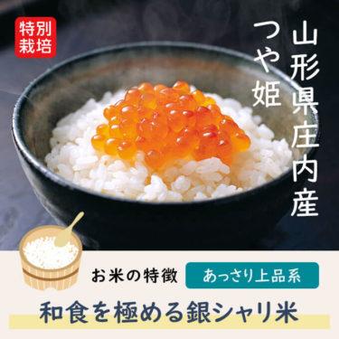 山形県 庄内米 特別栽培米 つや姫