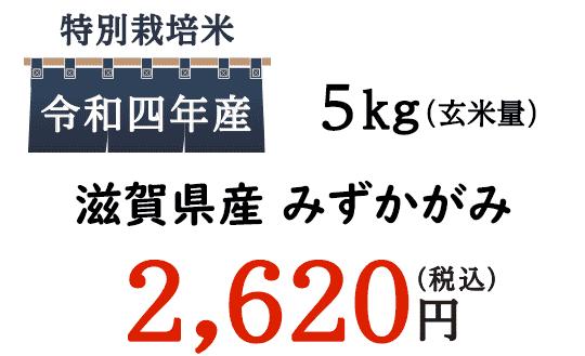 美味しいごはんなら通販でも好評。滋賀県近江米のごはんがオススメです