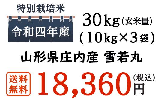 雪若丸は2018年秋に登場した日本の稲の品種・銘柄の名前です