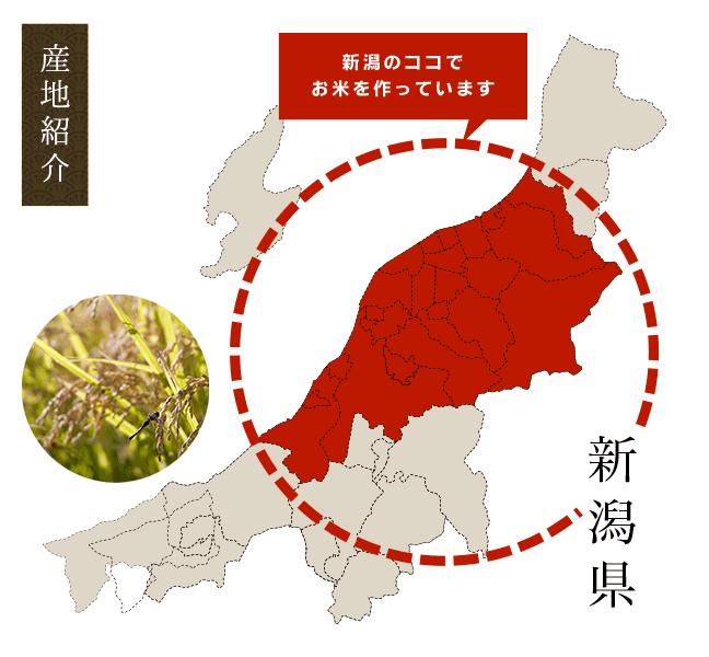 新潟県産のお米